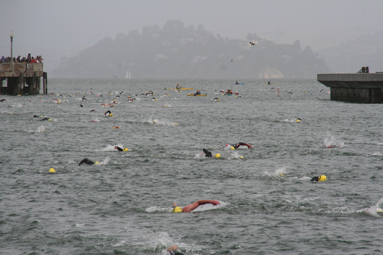 alcatraz in the distance as swimmers approach the opening to aquatic park